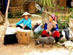 Lao cai - Bac Ha - Coc Ly Homestay 3Days